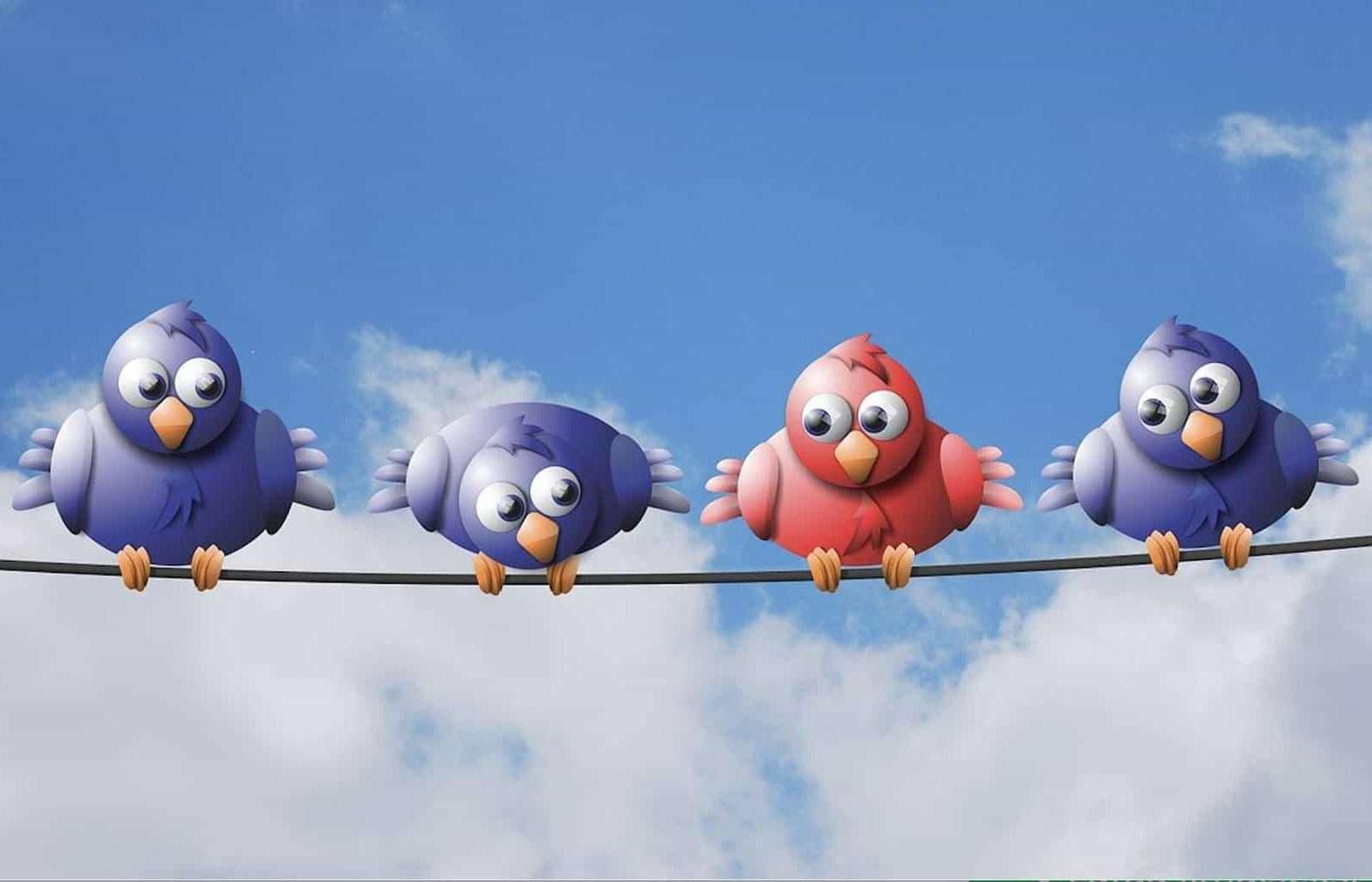 Erilaiset linnut langalla